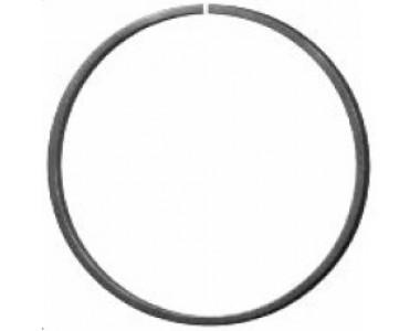 Кольцо 170-170